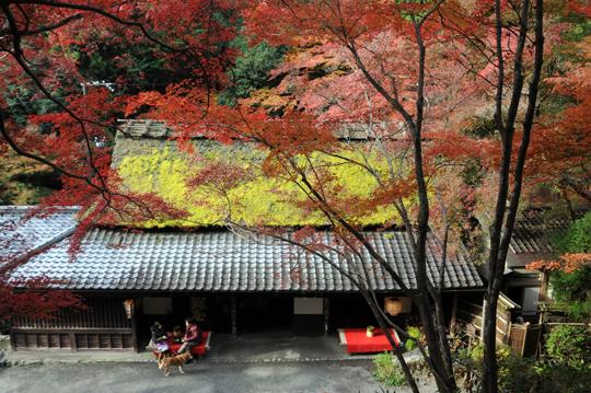 01Kyoto_201111_n102.jpg