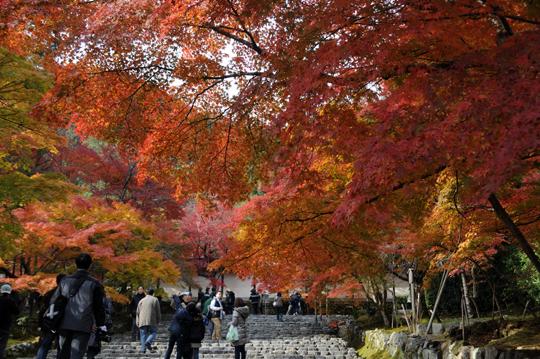 02Kyoto_201111_n244.jpg