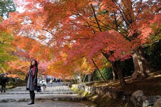 03Kyoto_201111_n241.jpg