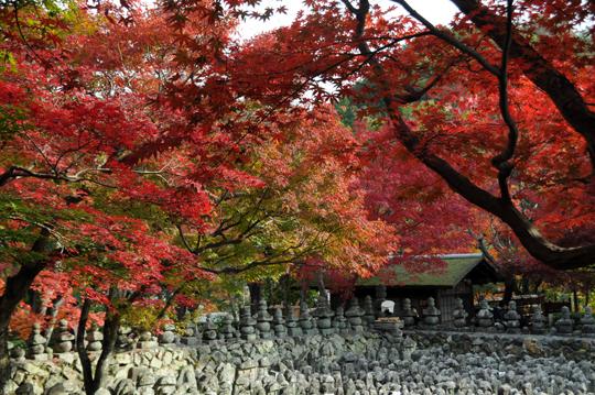 05Kyoto_201111_n200.jpg