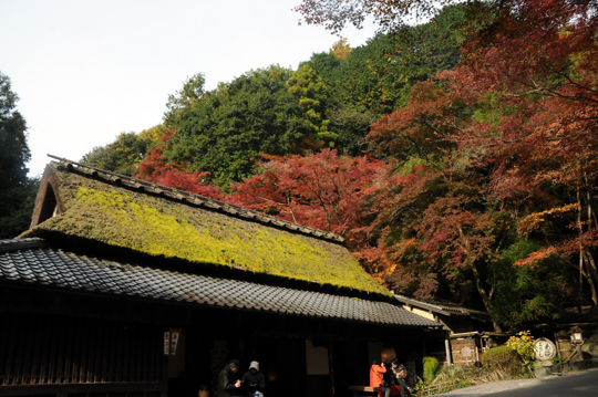 06Kyoto_201111_n146.jpg