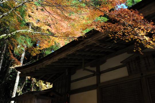 Kyoto_201111_n007.jpg