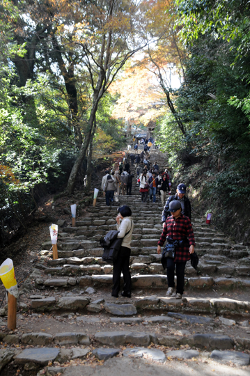 Kyoto_201111_n023.jpg