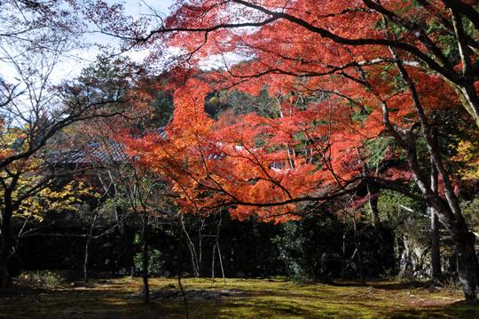 Kyoto_201111_n042.jpg