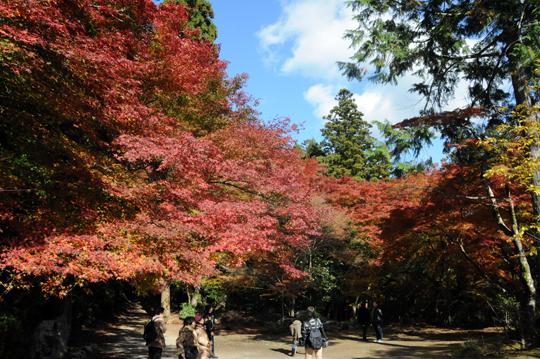 Kyoto_201111_n045.jpg