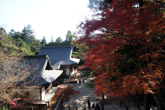 Kyoto_201111_n049.jpg
