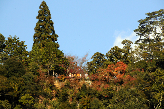 Kyoto_201111_n071.jpg