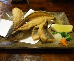 ishigaki_110430_r53.jpg