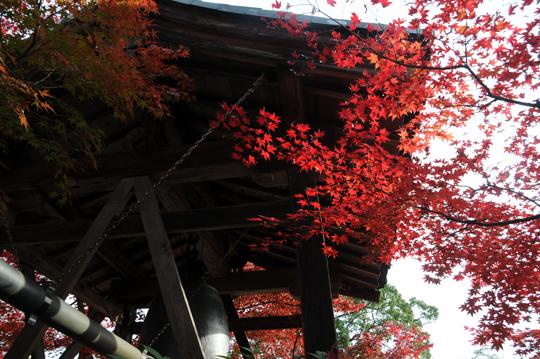 k04Kyoto_201111_n197.jpg