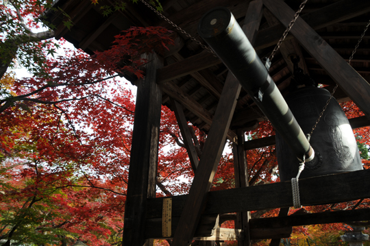 k06Kyoto_201111_n191.jpg