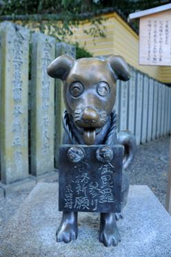 kagawa_201009_n215.jpg