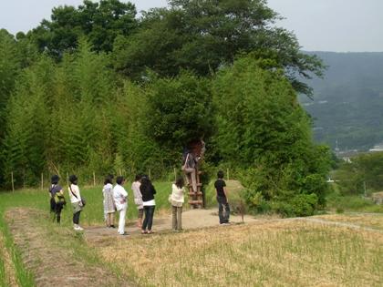 kagawa_201009_r249.jpg