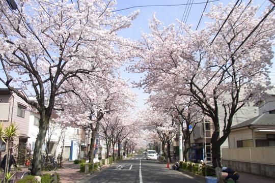kameari_120410_r1.jpg