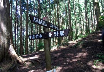 okumusashi_120816_2.jpg