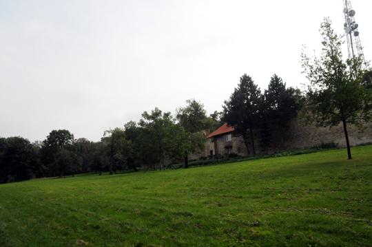 at_cz_2011_n686.jpg