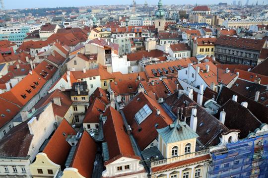 at_cz_2011_n706.jpg