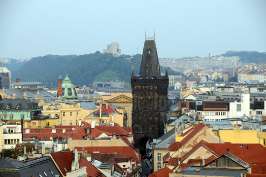 at_cz_2011_n796.jpg