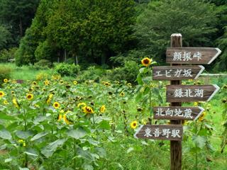 okumusashi_120808_11.jpg